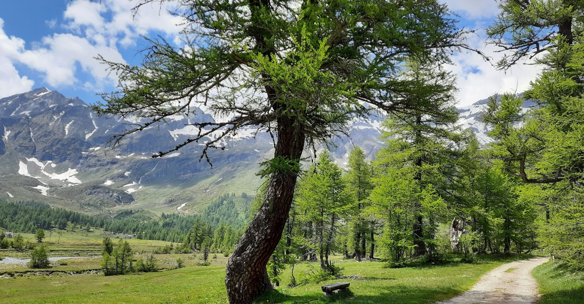 Piana Alpe Veglia